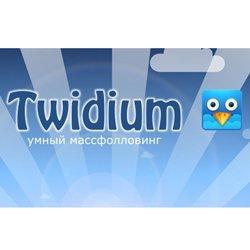 Тэг twidium .